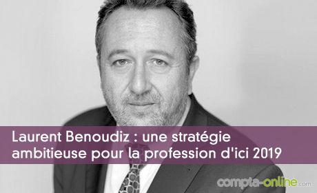 Laurent Benoudiz : une stratégie ambitieuse pour la profession d'ici 2019