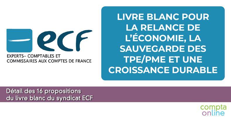 Détail des 16 propositions d'ECF
