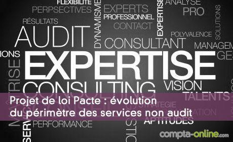 Projet de loi Pacte : évolution du périmètre des services non audit