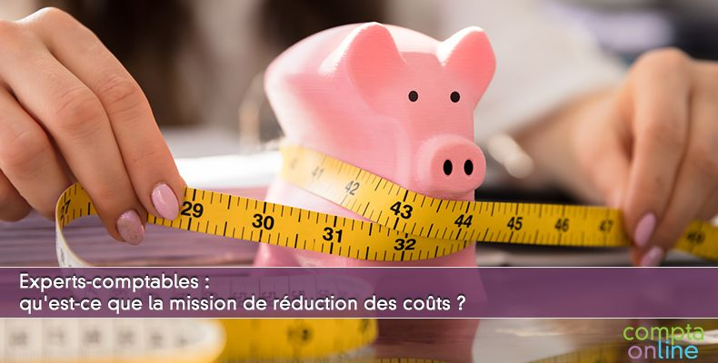 Qu'est-ce que la mission de réduction des coûts ?