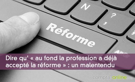 Dire qu' « au fond la profession a déjà accepté la réforme » : un malentendu