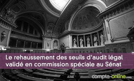 Le rehaussement des seuils d'audit l�gal des comptes valid� en commission sp�ciale au S�nat