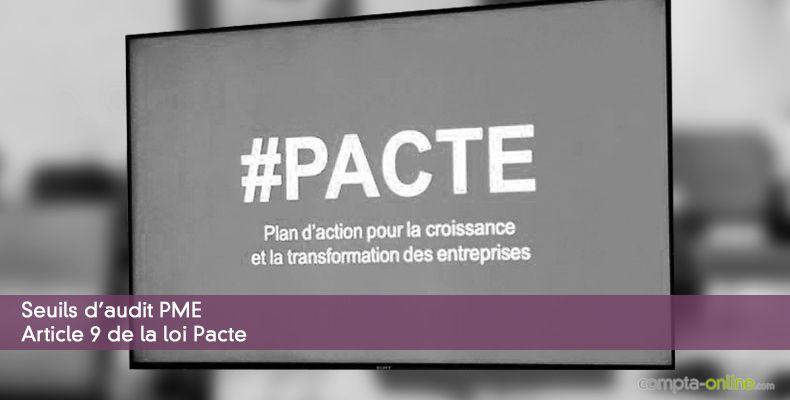 Seuils d'audit PME - Article 9 de la loi Pacte