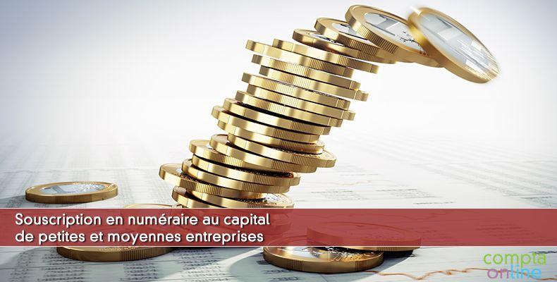 Souscription en numéraire au capital de petites et moyennes entreprises