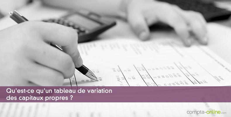 Qu'est-ce qu'un tableau de variation des capitaux propres ?