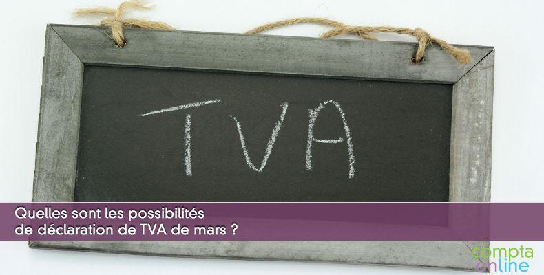 Quelles sont les possibilités de déclaration de TVA de mars ?
