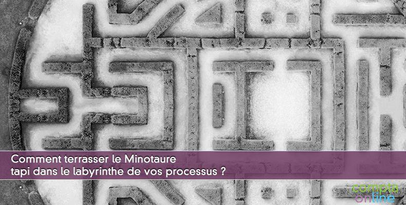 Livre blanc : Comment apprivoiser la complexité des processus comptables ?